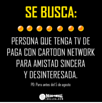 Cartoon Network, Memes, and Cartoon: SE BUSCA  PERSONA QUE TENGA TV DE  PAGA CON CARTOON NETWORK  PARA AMISTAD SINCERA  Y DESINTERESADA.  PD: Para antes del 5 de agosto  RAGONBALL  .SULLCA.COM