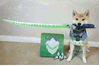 Dank, Doge, and Http: se  -O Genji Doge is ready to unleash his ultimate ability: http://knowyourmeme.com/photos/1170155-overwatch
