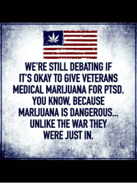 (W): se  WE'RE STILL DEBATING IF  IT'S OKAY TO GIVE VETERANS  MEDICAL MARIJUANA FOR PTSD  YOU KNOW, BECAUSE  MARIJUANA IS DANGEROUS...  UNLIKE THE WAR THEY  WERE JUST IN (W)