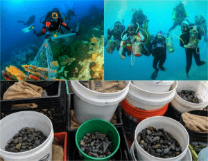 Beach, Florida, and Record: SEA  GODS  COSTA 633 scuba divers gathered at the Deerfield Beach International Fishing Pier in Florida and set Guinness World Record for underwater cleanup. The group retrieved 9,000 pieces of marine debris, and 3,200 pounds of fishing gear. Including 1,600 pounds of fishing weights.