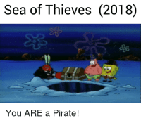 you are a pirate: Sea of Thieves (2018)  You ARE a Pirate!