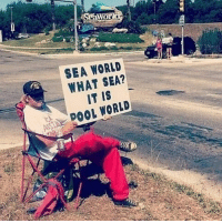 A protest I can get behind: SEA WORLD  WHAT SEA?  IT IS  DOOL WORLD A protest I can get behind