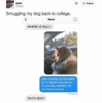 Memes, Providence, and Mom: Sean  @5eean  Smuggling my dog back to college.  Mom  WHERE IS WILLY  Hes coming to Corvallis  for a higher education  to provide stability for  his future family  Delivered  You're done  Follow Sorry mom, Willy needs to contribute to society. Twitter @5eean