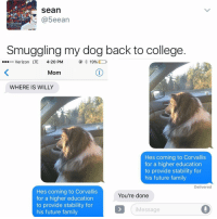 FREE WILLY: Sean  5eean  Smuggling my dog back to college  ...oo Verizon LTE  4:20 PM  19%  Mom  WHERE IS WILLY  Hes coming to Corvallis  for a higher education  to provide stability for  his future family  Delivered  Hes coming to Corvallis  You're done  for a higher education  to provide stability for  Message  his future family FREE WILLY