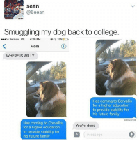 College, Family, and Future: sean  @5eean  Smuggling my dog back to college.  oo Verizon LTE 4:20PM  19%  Mom  WHERE IS WILLY  Hes coming to Corvallis  for a higher education  to provide stability for  his future family  Delivered  Hes coming to Corvallis  for a higher education  to provide stability for  his future family  You're done  Message 🤣Another level