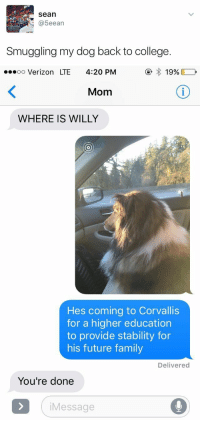 Verizon, Girl Memes, and 4 20: Sean  (a 5eean  Smuggling my dog back to college.   oo Verizon LTE 4:20 PM  19%  Mom  WHERE IS WILLY  Hes coming to Corvallis  for a higher education  to provide stability for  his future family  Delivered  You're done  i Message me when I'm in college 😂