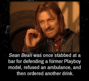 Sean Bean, Playboy, and Been: Sean Bean was once stabbed at a  bar for defending a former Playboy  model, refused an ambulance, and  then ordered another drink. One does not simply kill sean been