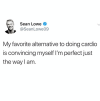 Beautiful, Girl Memes, and Christina Aguilera: Sean Lowe  @SeanLowe09  My favorite alternative to doing cardio  is convincing myself I'm perfect just  the way l am *cue Beautiful by Christina Aguilera*