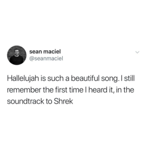 Beautiful, Shrek, and Time: sean maciel  @seanmaciel  Halleluiah is such a beautiful sona, I still  remember the first time I heard it, in the  soundtrack to Shrek It is a beautiful song tho