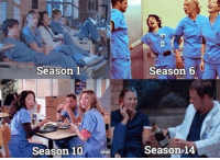Memes, Okay, and 🤖: Season 1  Season 6  Season 10 bc  Season,14 Okay like this actually hurts. #GreysAnatomy https://t.co/Fto6H6Q4vk