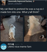 Thats what u get via /r/memes http://bit.ly/2CkovkL: Seasonally Depressed Sachary 4)  @zach_cooley801  My cat liked to pretend he was a rug so l  made him into one. What y'all think?  @peta 1h  PeTA LMAO nice meme fam Thats what u get via /r/memes http://bit.ly/2CkovkL