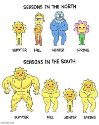 Fall, Winter, and Summer: SEASONS IN THE NORTH  SUMMER FALL  WINTER  SPRING  SEASONS IN THE SOUTH  0O  SUMMER  FALL  WINTER SPRING  QULTURD.Com