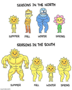 Fall, Winter, and Summer: SEASONS IN THE NORTH  SUMMER FALL  WINTER  SPRING  SEASONS IN THE SOUTH  0O  SUMMER  FALL  WINTER SPRING  QULTURD.Com Me🌞irl