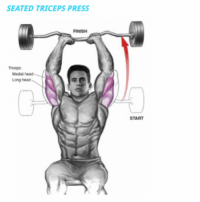Terrific 25 Best Tricep Workout Memes Triceps Workout Memes Kick Pabps2019 Chair Design Images Pabps2019Com