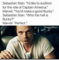 """He was meant to be the Winter Soldier 😂: Sebastian Stan: """"I'd like to audition  for the role of Captain America.""""  Marvel: """"You'd make a good Bucky.""""  Sebastian Stan: """"Who the hell is  Bucky?  Marvel: """"Perfect.""""  Avengers/Memes He was meant to be the Winter Soldier 😂"""