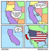 California, USABall, and Reagan: SECESSION  aAIT, CALIFORNIA!  WE NEED YOUR  ELECTORAL  VOTES!  SEE?  ITS NOT  50  BA  NO, GUYS THIS IS  BEST FOR BOTH OF  US,  RED PANELS COM made in Amazing American Memes  ~Reagan