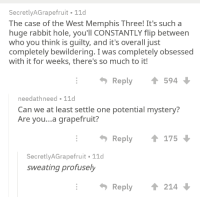 Rabbit, Mystery, and Beetlejuicing: SecretlyAGrapefruit 11d  The case of the West Memphis Three! It's such a  huge rabbit hole, you'll CONSTANTLY flip between  who you think is guilty, and it's overall just  completely bewildering. I was completely obsessed  with it for weeks, there's so much to it!  Reply  594  needathneed 11d  Can we at least settle one potential mystery?  Are you...a grapefruit?  Reply  175  SecretlyAGrapefruit 11d  sweating profusely  Reply ↑ 214