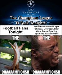 Memes, 🤖, and Man Utd: SEE  CHAMPIONS  LEAGUE  The Champions League  Is Back Tonight!  Meanwhile Man Utd, Ajax  Football Fans  Chelsea, Liverpool, Inter,  Milan, Roma, Sporting,  Tonight  Lyon and Marseille fans  THE  THE  TrollFootballMedia  CHAAAAMPIONS!! CHAAAAMPIONS!! The Chammmpppioonnss!!! 🙌 🔻LINK IN OUR BIO! ⚽️