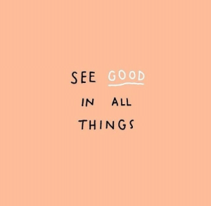 Good, All, and Thing: SEE  GOOD  IN ALL  THING S