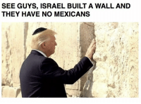 SEE GUYS, ISRAEL BUILT A WALL AND  THEY HAVE NO MEXICANS memes ifunny funny silly stupid mexico usa trump jew jewish like4like l4l followme folow4folow