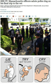 Cry Cry A Lot: SEE IT: Massachusetts officers salute police dog on  his final trip to the vet  Kaiser, a German shepherd with the Plymouth Police Department in Massachusetts, was put down  Friday after suffering from kidney failure  Comments (10)  BY VICTORIA TAYLORINEW YORK DAILY NEWS  SATURDAY, JUNE 1, 2013, 3:40 PM  in  digg   LIE  DOWN  TRY  NOT TO CRY  CRY  A LOT