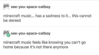 Minecraft, Music, and Home: see-you-space-catboy  minecraft music... has a sadness to it... this cannot  be denied  see-you-space-catboy  minecraft music feels like knowing you can't go  home because it's not there anymore meirl