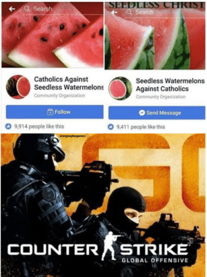 This war the war to end all wars: SEEDLESS CHRIST  Q Search  Search  Catholics Against  Seedless Watermelons  Seedless Watermelons  Against Catholics  Community Organization  Community Organization  Follow  Send Message  9,411 people like this  9,914 people like this  wangusplazgames  COUNTER STRIKE  GLOBAL OFFENSIVE This war the war to end all wars