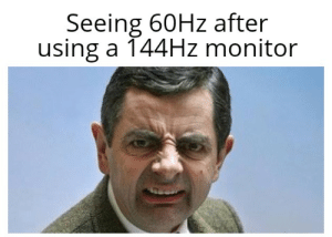 Seeing 60Hz After Using a 144HZ Monitor Yuppp | Using Meme on ME ME