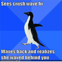 Memes, Waves, and Murphy's Law: SeeS CrllSh Wave hi  Waves back and realizes  she waved behind you Murphy's Law
