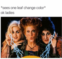 Memes, Tag Someone, and Change: *sees one leaf change color*  ok ladies tag someone who is READY 🍂🍂🍂 (@fangirls)