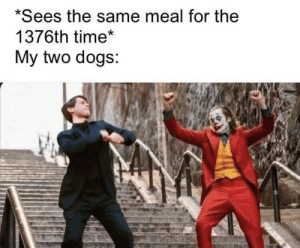 https://t.co/Y1h37vxEhg: *Sees the same meal for the  1376th time*  My two dogs: https://t.co/Y1h37vxEhg