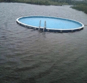 Segregated swimming pool in Mississippi, (1962, colorized): Segregated swimming pool in Mississippi, (1962, colorized)