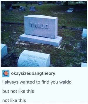 Rip waldo by adambeck656 MORE MEMES: SELDEN FISHER  WALDO  1876  JULY 24  okaysizedbangtheory  i always wanted to find you waldo  but not like this  not like this Rip waldo by adambeck656 MORE MEMES