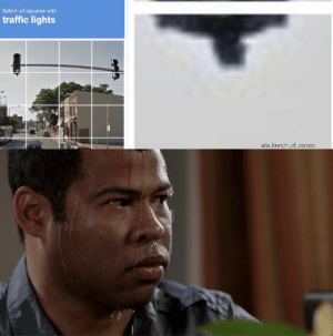 Shit, Traffic, and Dank Memes: Select all squares with  traffic lights  u/a_bunch_of_zeroes Well shit. What do I do