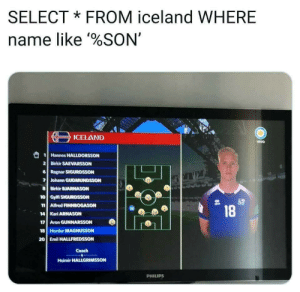 I dont watch soccer but, this world cup memes are 10/10: SELECTFROM iceland WHERE  name like %SON'  ICELAND  vivo  2 Birkir SAEVARSSON  Ragnar SIGURDSSON  7 Johann GUDMUNDSSON  8 Birkir BJARNASON  10 GylfiSIGURDSSON  n Alfred FINNBOGASON  18  14 Kari ARNASON  18 Hordur MAGNUSSON  20 Emil HALLFREDSSON  Coach  Heimir HALLGRIMSSON  PHILIPS I dont watch soccer but, this world cup memes are 10/10