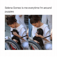 Puppies, Saw, and Selena Gomez: Selena Gomez is me everytime I'm around  puppies she saw that dog on the street and ran to hug him 😭❤️