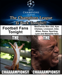 Memes, 🤖, and Man Utd: SELF  CHAMPIONS  LEAGUE  The Champions League  Is Back Tonight!!  Football Fans  Meanwhile Man Utd, Ajax  Chelsea, Liverpool, Inter,  Milan, Roma, Sporting,  Tonight  Lyon and Marseille fans  THE  THE  b.com/  CHAAAAMPIONS!! CHAAAAMPIONS!! The Chammmpppioonnss!! 🙌 🔺LINK IN OUR BIO 😎🔥
