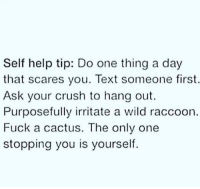 Crush, Fuck, and Help: Self help tip: Do one thing a day  that scares you. Text someone first.  Ask your crush to hang out.  Purposefully irritate a wild raccoon  Fuck a cactus. The only one  stopping you is yourself. meirl