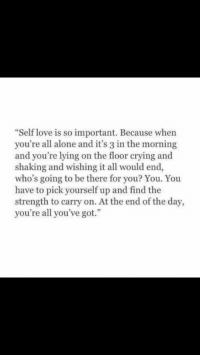 """Being Alone, Crying, and Love: """"Self love is so important. Because when  you're all alone and it's 3 in the morning  and you're lying on the floor crying and  shaking and wishing it all would end,  who's going to be there for you? You. You  have to pick yourself up and find the  strength to carry on. At the end of the day,  you're all you've got."""""""