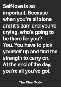 <3: Self-love is so  important. Because  when you're all alone  and it's 3am and you're  crying, who's going to  be there for you?  You. You have to pick  yourself up and find the  strength to carry on.  At the end of the day,  you're all you've got.  The Plus Code <3
