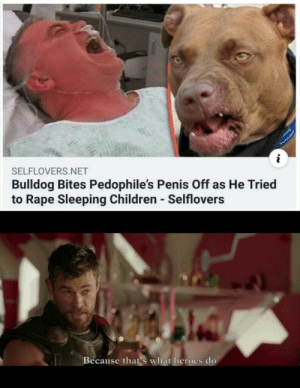 That dog is our hero: SELFLOVERS.NET  Bulldog Bites Pedophile's Penis Off as He Tried  to Rape Sleeping Children - Selflovers  Because that's what heroes do That dog is our hero