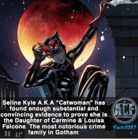 """Crime, Dope, and Family: Selina Kyle A.K.A """"Catwoman"""" has  found enough substantial and  convincing evidence to prove she is  the Daughter of Carmine & Louisa  Falcone. The most notorious crime  Fact #357  family in Gotham. - That would be a pretty dope backstory. • • -QOTD?!: Favorite villain in Gotham?!"""