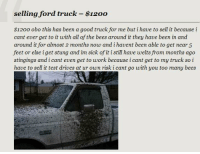 ford truck: selling ford truck-$1200  $1200 obo this has been a good truck for me but i have to sell it because i  cant ever get to it with all of the bees around it they have been in and  around it for almost 2 months now and i havent been able to get near 5  feet or else i get stung and im sick of it i still have welts from months ago  stingings and i cant even get to work because i cant get to my truck so i  have to sell it test drives at ur own risk i cant go with you too many bees  403