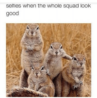 Ayeee square goals lol @arianagol: selties when the whole squad look  good Ayeee square goals lol @arianagol