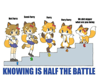 XD: Semi-Furry  Furry  Not Furry  Very Furry  Oh shit nigger  What are you doing  KNOWING IS HALF THE BATTLE XD