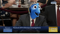 Be Like, Memes, and Live: Senate  Russia & 2016 Election Investigations  Intelligence  Committee  LIVE  2:45 pm ET  CSPAN  C-span org  CSpan Jeff Sessions be like:
