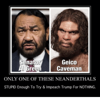 Admin Soozi  I LOVE Spanking LIBERALS!: Senator  Green  Geico  Caveman  ONLY ONE OF THESE NEANDERTHALS  STUPID Enough To Try & Impeach Trump For NOTHING. Admin Soozi  I LOVE Spanking LIBERALS!
