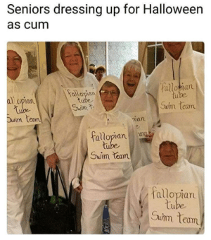 Cum, Funny, and Halloween: Seniors dressing up for Halloween  as cum  alloan  allopian  ube  al opian  Swim  Suim team  Duim Leam  ian  allopiana  tu  Swim lean  allopian  tu  Suim team  Owm lan Fallopian Tube Swim Team via /r/funny https://ift.tt/2q0PgVr