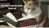 Caturday, Work, and DnD: SENORGIF.COM  tb.com/dndmemes  Knowing is half the battle  Study up!  THE ART OF  STRATEGY Always make sure to make a plan! Not that it will work or anything....  -Brewmaster Meg' #caturday