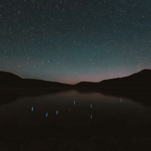 God, Tumblr, and Blog: sensitivityandbrutality:  earthstory:  Starry night reflecting in a Pacific Northwest Lake  Honest to god I just died